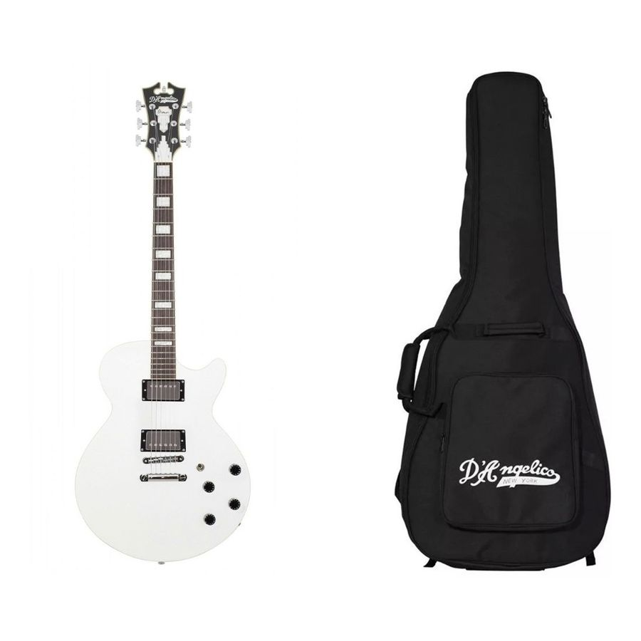 Guitarra-Electrica-D-angelico--Premier-Ss-No-F----Funda