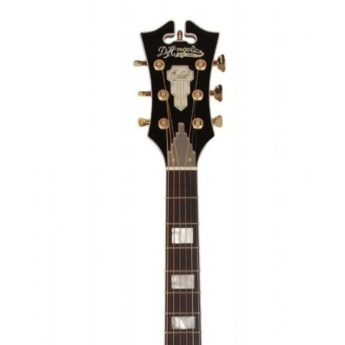 Guitarra-Acustica-Dangelico-Sg100-Mercer-Fishman-Cherr-Snb